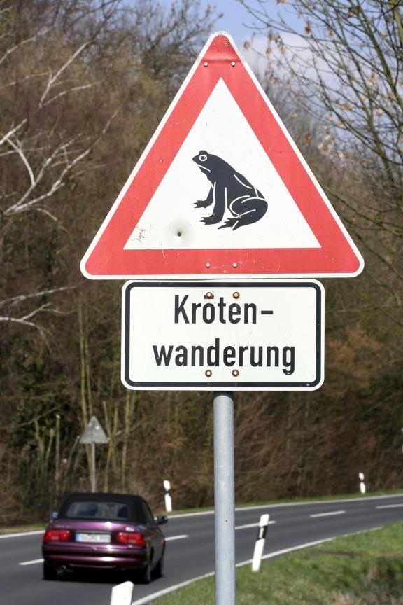 Achtung, Amphibien!