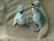 Neue Pinguinbabies erblicken Licht der Welt!