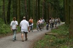 Schwetzinger Hardt ist größtes Waldschutzgebiet mit Erholungswald in Baden-Württemberg