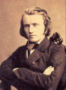 """""""Leben und Leiden von Johannes Brahms"""""""