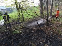 Waldbrandgefahr durch lang anhaltende Trockenheit