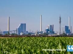 Kostenfreie Energieberatung für Gewerbebetriebe