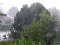 """""""Regenwasser nachhaltig nutzen"""""""