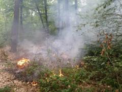 Sperrung von Grillplätzen und Feuerstellen