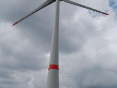 Stadt Heidelberg will keine Windräder im Wald