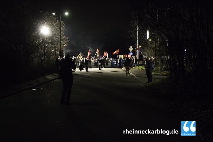 AfD Mannheim Frauke Petry Gegendemo-28. Januar 2016-IMG_3872