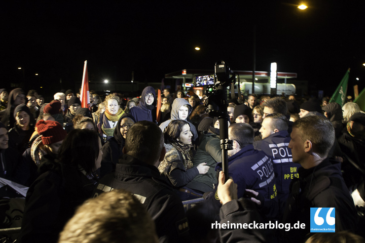 AfD Mannheim Frauke Petry Gegendemo-28. Januar 2016-IMG_3928
