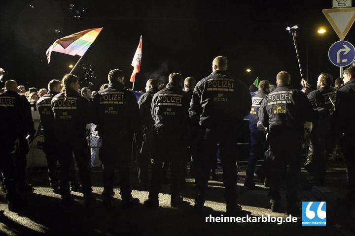 AfD Mannheim Frauke Petry Gegendemo-28. Januar 2016-IMG_3934
