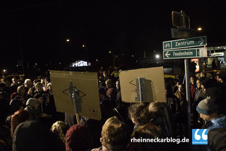AfD Mannheim Frauke Petry Gegendemo-28. Januar 2016-IMG_3971
