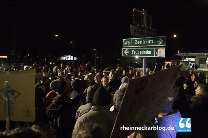 AfD Mannheim Frauke Petry Gegendemo-28. Januar 2016-IMG_3999