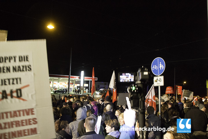 AfD Mannheim Frauke Petry Gegendemo-28. Januar 2016-IMG_4006
