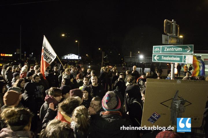 AfD Mannheim Frauke Petry Gegendemo-28. Januar 2016-IMG_4033