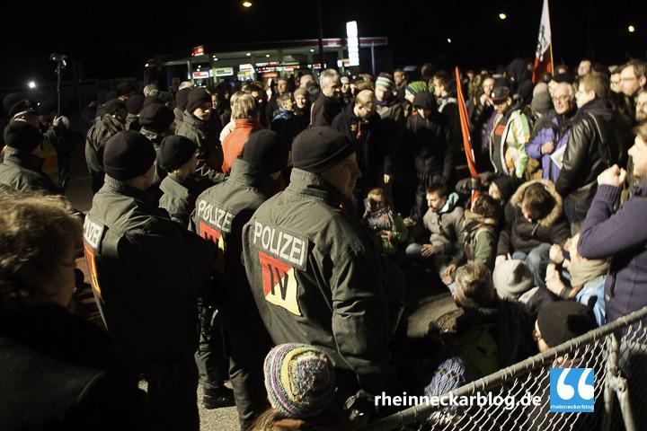 AfD Mannheim Frauke Petry Gegendemo-28. Januar 2016-IMG_4043