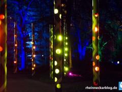 Luisenpark leuchtet etwas länger