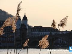 Infoveranstaltung zum Architektenwettbewerb für Heidelbergs neues Konferenzzentrum