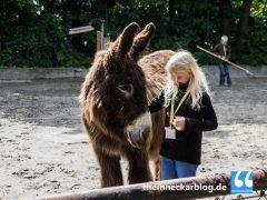 Tierischer Ferienspass im Heidelberger Zoo