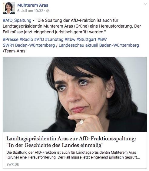 Afd Spaltung