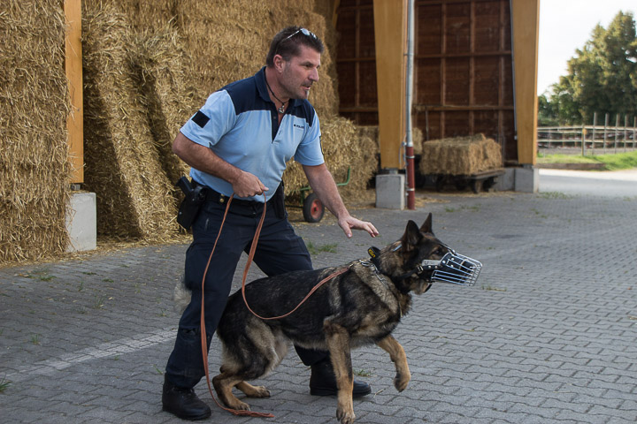 polizei-hundestaffel-mannheim-20160921-img_9051