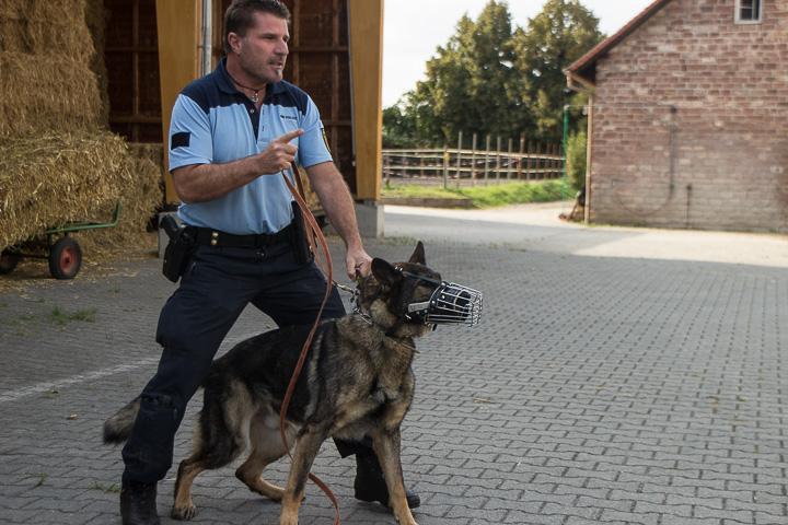 polizei-hundestaffel-mannheim-20160921-img_9055
