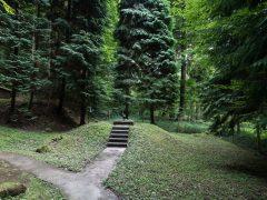 Führung zu Trinkwasserquellen in Handschuhsheim