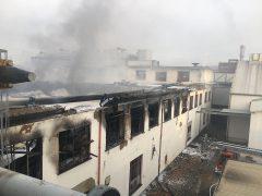Brand bei Naturin in Weinheim