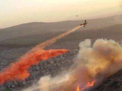 Neue Form des Terrors? Zahlreiche Brände in Israel