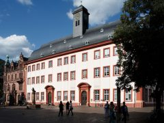 Heidelberger Halbmarathon am 30. April
