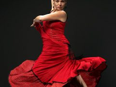 Flamenco Festival im Capitol