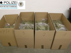 30 Kilo Marihuana sichergestellt