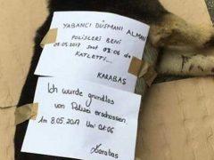 """""""Ausländerfeindliche, deutsche Polizisten haben mich, Karabas, umgebracht"""""""