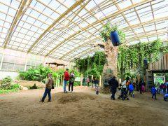 Tag der offenen Tür im Heidelberger Zoo