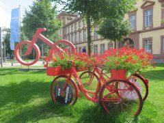 50 rote FlowerVelos von MonnemBike stehen zum Verkauf