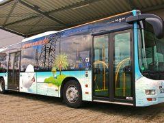 Mit Bus und Bahn zum Blütenwegfest