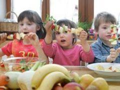 Ernährungsbildung leicht gemacht!