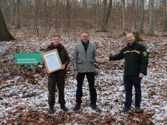 Heidelberg hat den Staffelstab an Wernigerode im Harz übergeben