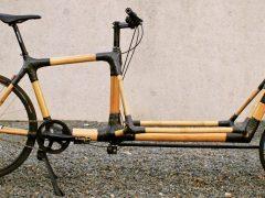 Aus Schwetzinger Bambus wird ein Lastenrad gefertigt